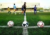 Herbe synthétique/rassemblement artificiel de gazon pour la cour du football (JDS-50)