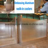 Алюминиевая холодная комната емкости 30m3