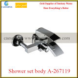 Do chuveiro de bronze da lavagem do banheiro corpo ajustado