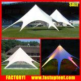 Tenda a forma di stella di alluminio dell'alto picco del Palo per l'evento
