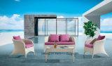 単一の&Doubleと一緒にセットされる快適な屋外の庭の家具のソファー(YT585)
