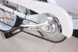 Electric Bicycle Companyのための電気自転車を開く脂肪質のタイヤ