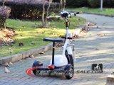販売の子供のシートおよび子供のHandbarのスクーターEs5013が付いているクラシック3の車輪の容易なライダーの電気小型スクーター