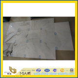 Wall、Floor、Countertop (YYL)のためのCastro White Marble Stone Tiles