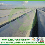 Tela não tecida tratada UV para a agricultura