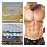 Hormona esteróide Bodybuilding HMG do crescimento humano do músculo