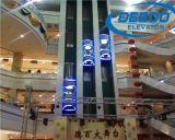 Elevatore facente un giro turistico largo di vetro di vista di bellezza