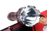 Luz do acento do bulbo do diodo emissor de luz com Ce, RoHS, MSDS, ISO, GV