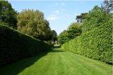 Moquette sintetica dell'erba di paesaggio per il giardino
