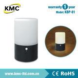 熱い販売のプラスチックLED電池夜ライトKbp-01