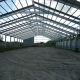 Alti Rise e Large Span Steel Structure Workshop Building