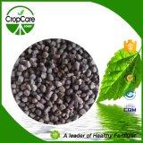 Lavorazione organica composta del fertilizzante dell'acido umico di NPK (10-5-10)