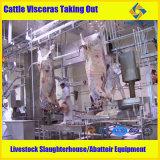 50 cabeças por o equipamento da chacina do gado da SHIFT
