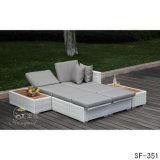 Sofa de rotin de PE, meubles extérieurs, Sf-351