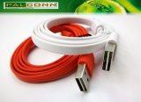 Nicht direktionaler USB2.0 Stecker zum Typ C Kabel für Computer & Smartphone, Strombewertung ~ 3A, Spannungsabfall .: 0.3V @ 3A