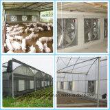 Ventilateur d'extraction va-et-vient de Qingzhou Gongle Centrifual