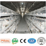 Bratrost-Rahmen-Geflügelfarm mit automatischem Huhn-Haus