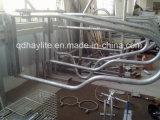 Горячее окунутое гальванизированное оборудование поголовья свободно ставит стойло в стойло скотин
