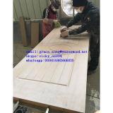 Cendre de peau de porte de placage/teck/Sapeli/peau porte de chêne moulés par HDF/MDF