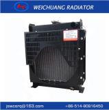 LG25W-B: Piccolo serbatoio di acqua per il radiatore del gruppo elettrogeno
