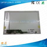 15.6 écran LCD neuf d'Afficheur LED d'ordinateur portatif de pouce Lp156wh2-Tlc1