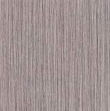 tegels van de Vloer van het Porselein van 60X60cm de Rustieke (C6201)