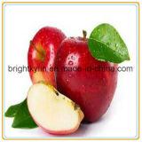 Apple en boîte (nourriture en boîte - conserve de fruits)