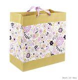 Грандиозный мешок подарка, бумажный мешок