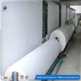 中国の工場ロールのPPによって編まれる管状のRaffiaファブリック