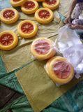 Festes Gummi PU-Rad für Rad-Eber
