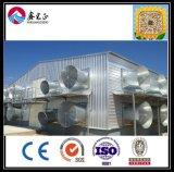 H сделанный в доме цыплятины стальной структуры Китая известной экспертной светлой, сарае цыпленка