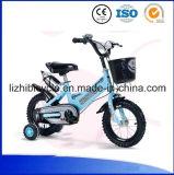All'aperto capretti della bicicletta di sport dei bambini dei ragazzi mini che corrono bici