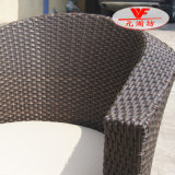 Professionele Manufacturer van Rattan Furniture (WF2121-27)