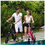 Panasonicのリチウム電池36VとFoldable電気自転車
