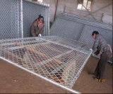 O americano galvanizou o cerco provisório do painel da ligação de 6 ' x12'chain