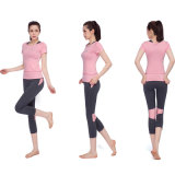 Pink Yoga Wear Nylon Yoga Pants Fitness Wear Fornecedor