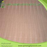 Voorzie 2.7mm Sapele Plywood van Good Quality en Price