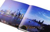 중국 (DFC005)에서 인쇄하는 최고 카탈로그
