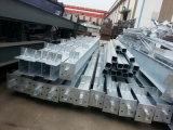 Edificio de la estructura de acero/marco de estructura de acero (SSW-256)