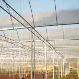 항온을%s 가진 야채에 의하여 이용되는 플라스틱 필름 온실
