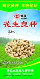 China fêz o saco tecido PP da semente com alta qualidade