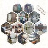 Porselein van de Reeks van de Kleur van de wereld verglaasde het Populaire Grijze de Matte Tegel van de Vloer