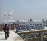 2kw 낮은 바람 시작 수평한 풍차 터빈 떨어져 격자 시스템