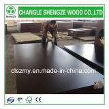 Le film de Shandong Changle a fait face au contre-plaqué marin de construction de contre-plaqué de contre-plaqué