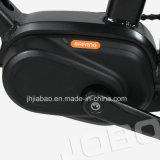 36V 250W de Midden Elektrische Fiets Op batterijen van de Motor 10.4ah