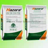 Fertilizzante solubile in acqua caldo di vendita 19-19-19 NPK con EDTA-Cu, tecnico di assistenza, manganese, Zn, B