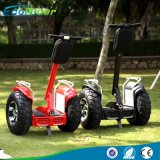 공장 2 바퀴 전기 각자 균형 스쿠터, 전기 2륜 전차