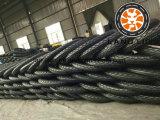 중국 제조자 3 바퀴 기관자전차 타이어 4.50-12, 5.00-12, 4.00-12