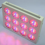 Hydroponic Indoor 600W LED Grow Light