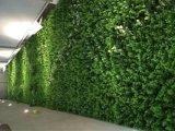 녹색 벽의 고품질 인공적인 플랜트 그리고 꽃